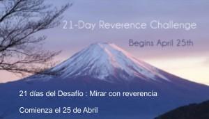 desafío 25 de abril